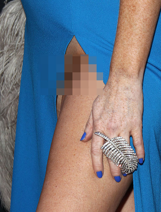 Celebrity With Hairy Pussy 35